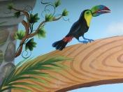 Zoo toucan