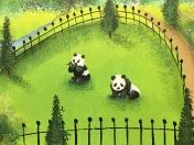 Zoo pandas