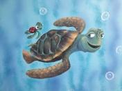 Turtles Nemo