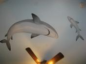 Ocean shark ceiling