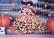 Windows -boy-in-leaves